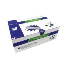 Panodyne Covid-19 Antigen Rapid Test Kit (24 Tests)